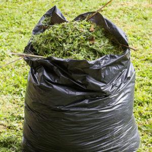 Big Bear Disposal Yard Waste